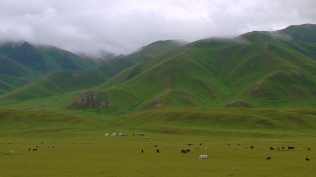 Horses dominate the slopes of Suusamyr Valley