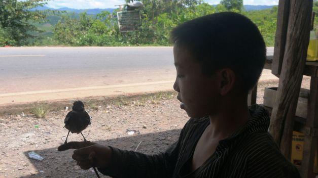 What a bird!