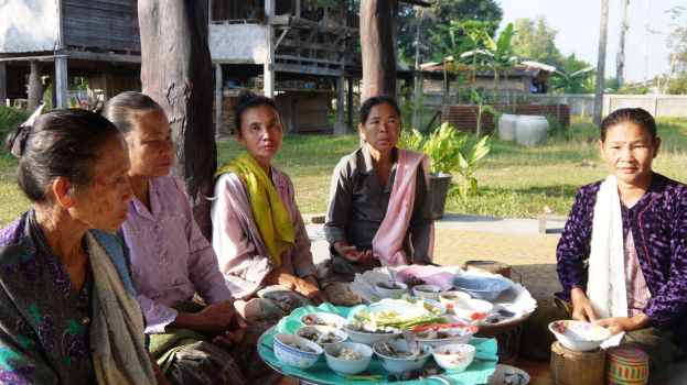 The mornings alms giving at the temple