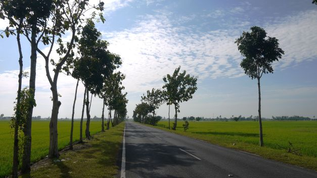 A typical road through the countryside of Malaysia's north