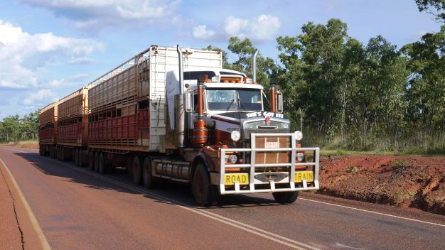 A beast of a roadtrain