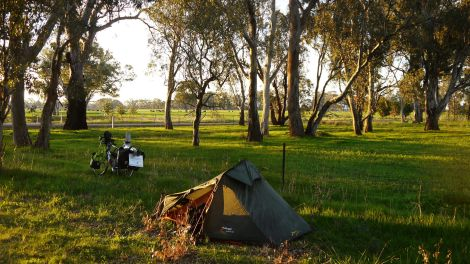 Camping under the trees near Euroa